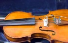 abstract musical background is the violin toned photo
